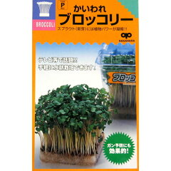 ブロッコリー スプラウト 種 【 かいわれブロッコリー 】 種子 小袋(約50ml) ( 種 …