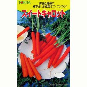 【ガーデニング】つくる楽しさをお届け★菜園くらぶスイートキャロット (にんじんの種) 4ml