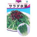 水菜 種 【 サラダ水菜 】 種子 小袋(約7ml) ( 種 野菜 野菜種子 野菜種 )