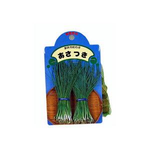 あさつき 種球 約200g 【国産】 [ ネギ 葱 アサツキ 浅葱 球根 種 ]