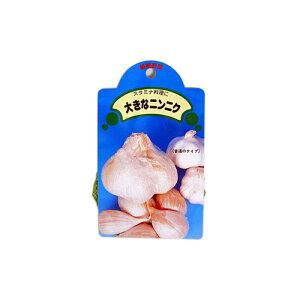 にんにく ジャンボニンニク 種球 約150g 【国産】 [ 葫 球根 種 ]