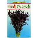 高菜・からし菜 種 【 赤からし水菜 】 種子 小袋(約5ml) ( 種 野菜 野菜種子 野菜種 )