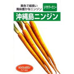沖縄島ニンジン (にんじんの種) 10ml