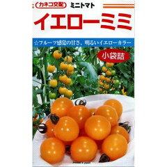 イエローミミ (ミニトマトの種) 20粒