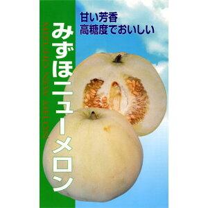 みずほニューメロン(メロンの種)1.8ml