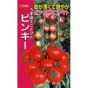 トマト 種 【 ピンキー 種 500粒入り】[ミニトマトの種 販売] 【野菜種子 販売】 【10P20Sep14】