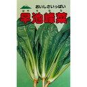 早池峰菜 (その他葉菜類の種) 2ml