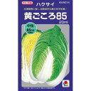 白菜 種 【 黄ごころ85 】 種子 小袋(約0.6ml) ( 種 野菜 野菜種子 野菜種 )