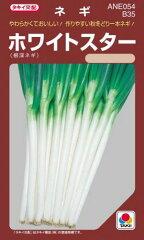 ネギ 種 【ホワイトスター】 ペレット200粒 ( 種 野菜 野菜種子 野菜種 )