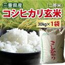 【 令和元年 新米 】三重県産 コシヒカリ 玄米 二等米 3