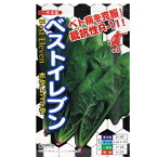 白菜 種 【 ベストイレブン 】 種子 小袋(約20ml) ( 種 野菜 野菜種子 野菜種 )