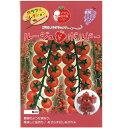 ミニトマト 種 【ルージュドボルドー】 100粒 ( 種 野菜 野菜種子 野菜種 )