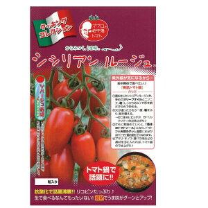 トマト 種 【シシリアンルージュ】 8粒 ( 種 野菜 野菜種子 野菜種 )