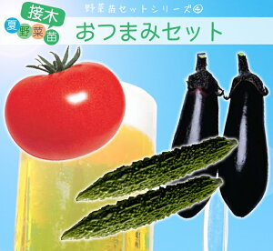 夏野菜苗 プチミニセット(トマト苗、ナス苗 きゅうり苗各4本 、計12本)