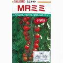 ミニトマト 種 【MRミミ】 10ml ( 種 野菜 野菜種子 野菜種 )
