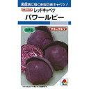 キャベツ 種 【 パワールビー 】 種子 小袋(約1ml) ...