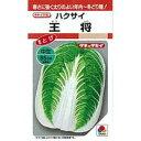白菜 種 【 王将 】 種子 1dl ( 種 野菜 野菜種子 野菜種 )