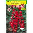 ミニトマト 種 【サンチェリー250】 100粒 ( 種 野菜 野菜種子 野菜種 )
