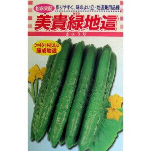 きゅうり 種 【美貴緑地這】 小袋 ( 種 野菜 野菜種子 野菜種 )