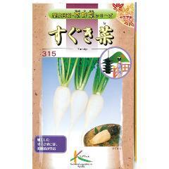 【 かぶ菜すぐき菜 】 種子 小袋(約10ml) ( 種 野菜 野菜種子 野菜種 )