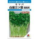 三つ葉 種 【 白茎ミツバ (関西系) 】 種子 1L ( 種 野菜 野菜種子 野菜種 )