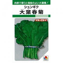 春菊 種 【 大葉春菊 】 種子 1L ( 種 野菜 野菜種子 野菜種 )