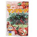 トマト 種 【 そのまんまdeミニトマト マンマミーア 】 500粒 ( 種 野菜 野菜種子 野菜種 )
