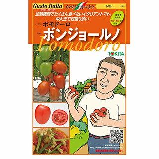 トマト 種【ポモドーロ ボンジョールノ 】小袋(15粒)( 野菜種 西洋野菜 グストイタリア )