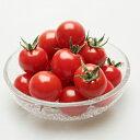 ミニトマト 種 【 ルビーラッシュ 】 100粒 ( ミニトマトの種 )