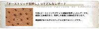 【イルビゾンテ/ILBISONTE腕時計】オーストリッチ型押しレザーリストウォッチバンド(メンズ)(20mm)[商品番号_5422308197]【メール便送料無料対応可】【あす楽対応】
