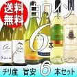 旨安の白!チリワイン6本セット (Ver.12)【送料無料】