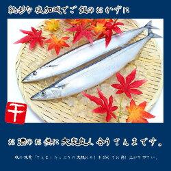 北海道産大型一汐サンマ(頭付き丸ごと1尾)2尾入り真空個包装