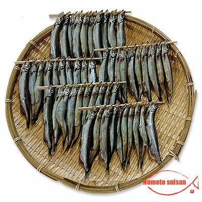 魚介類・水産加工品, シシャモ  1kg(500g2)