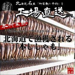 北海道(広尾産)ししゃもオスメス込み30尾(10尾×3)【本ししゃも】