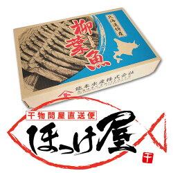 【送料無料】北海道(広尾産)ししゃもオスメス込み30尾(10尾×3)(化粧箱入)【本ししゃも】