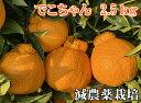 でこちゃん2.5K【減農薬栽培】元祖