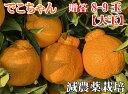 こだわりでこちゃん8-9大玉【減農薬栽培】元祖