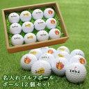 即日 ゴルフボール  ゴルフ ボール 名 入れ12個【ハロウ...