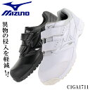 【送料無料】 ミズノ MIZUNO 安全靴 C1GA1711