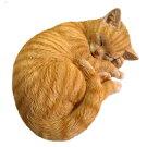 野川農園眠り猫B茶トラ12689サイズ(約):W28cm×D21cm×H11cm