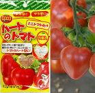 【ハートのトマト栽培容器】ミニトマト向け5個入