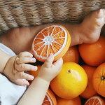 Oli&Carol/オレンジのクレメンティーノちゃんオリー&キャロル歯固めスペイン