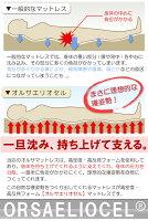 厚さ10cmイタリア製高反発健康三つ折りマットレスオルサエリオセルシングルサイズマニフレックスメッシュウィングと同じイタリア製折りたたみマットレス高反発マットレス3つ折りマットレス腰痛対策3つ折り