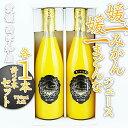 【特選】媛一みかんジュース+媛一まどんなジュース 各1本×2本セット 送料無料