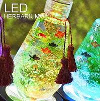 【LED付き金魚のハーバリウム】 ハーバリウム ギフトled LED ハーバリウム 誕生日 プリザーブドフラワー ギフト プリザーブドフラワー 誕生日 ギフト プレゼント ハーバリウム お供え 枯れない花 お供え ハーバリウム 贈り物