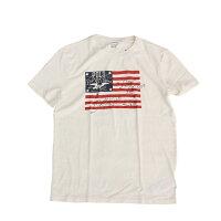 PoloRalphLaurenメンズTEETシャツUSA国旗柄ビッグサイズありポロラルフローレン