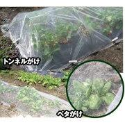 メッシュ ほうれん草 トンネル ビニール