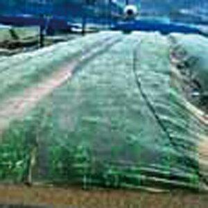 台風ネット 10m×50m