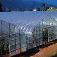 農ポリ 厚さ0.03mm×幅210cm×長さ200m