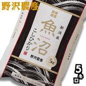 特別栽培米コシヒカリ30年産白米25kg(5kg×5袋)ブナの水特A長野県北信産高橋義三お米送料無料(沖縄を除く)